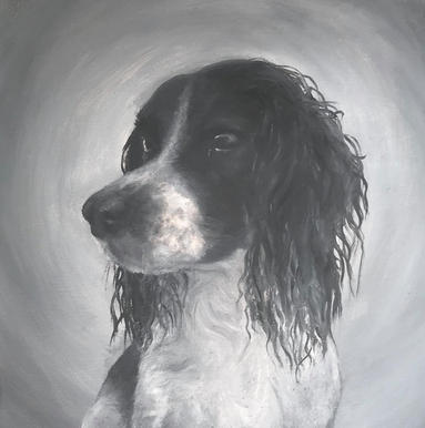 Bertie on Canvas (2017)
