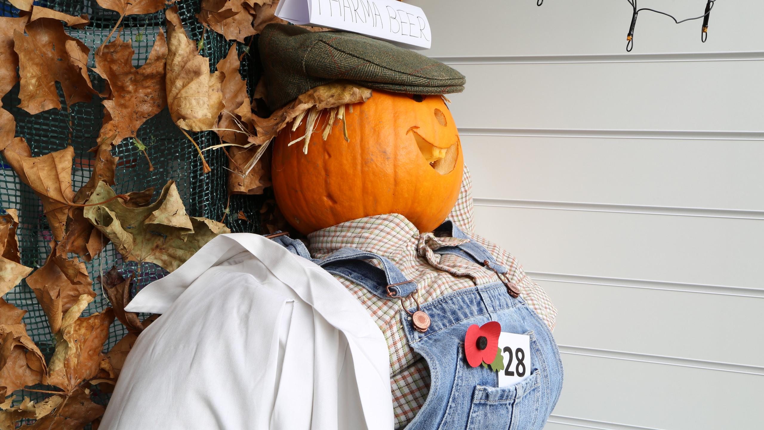 Chemist Scarecrow
