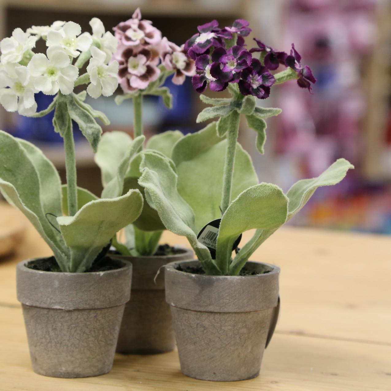 Artifical primrose collection