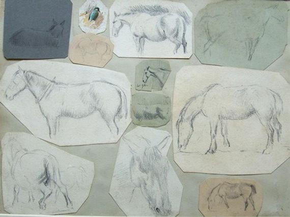 Studies of horses
