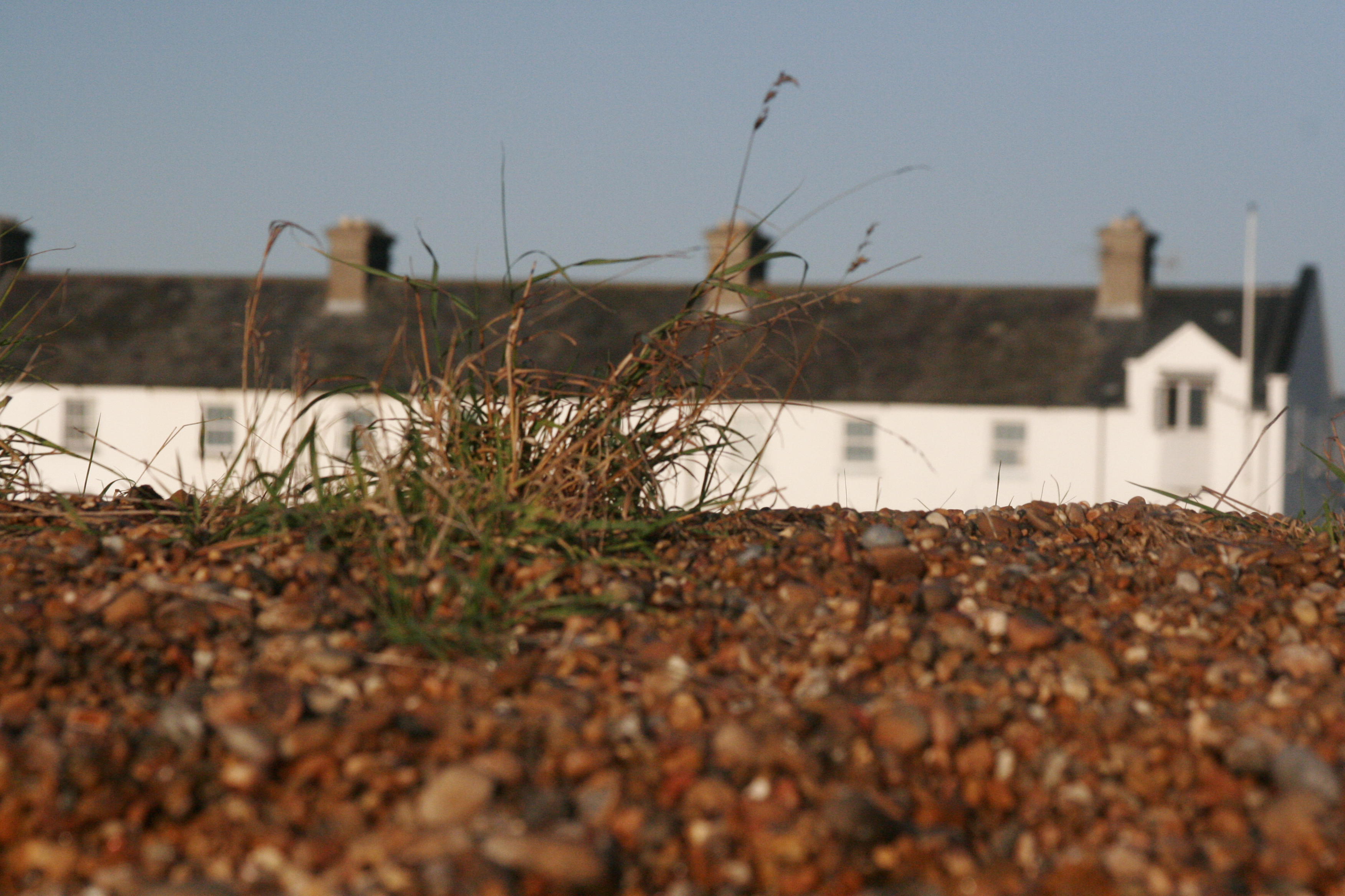 A shingle bank near Hollesley