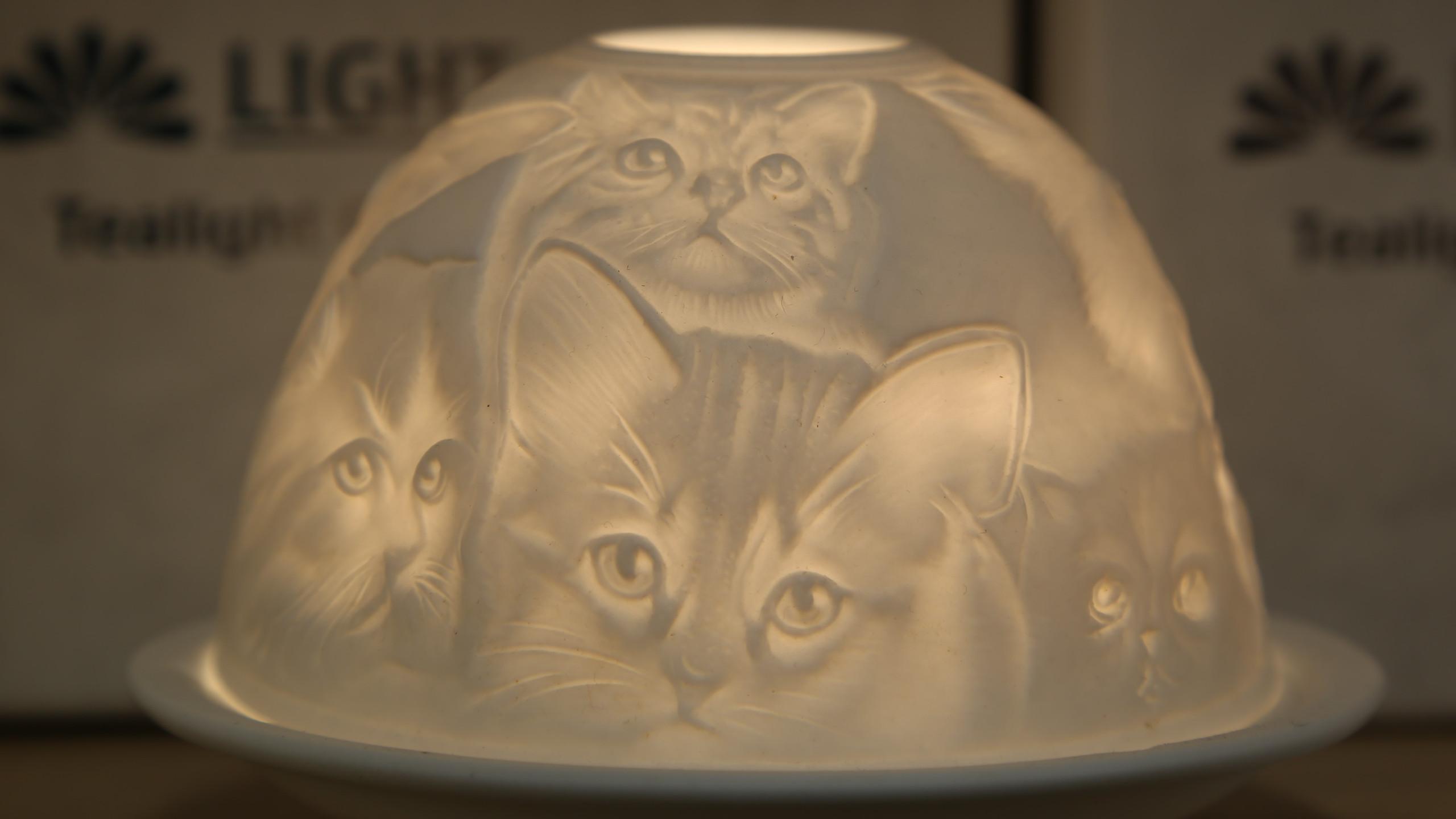 Cats Tea Light