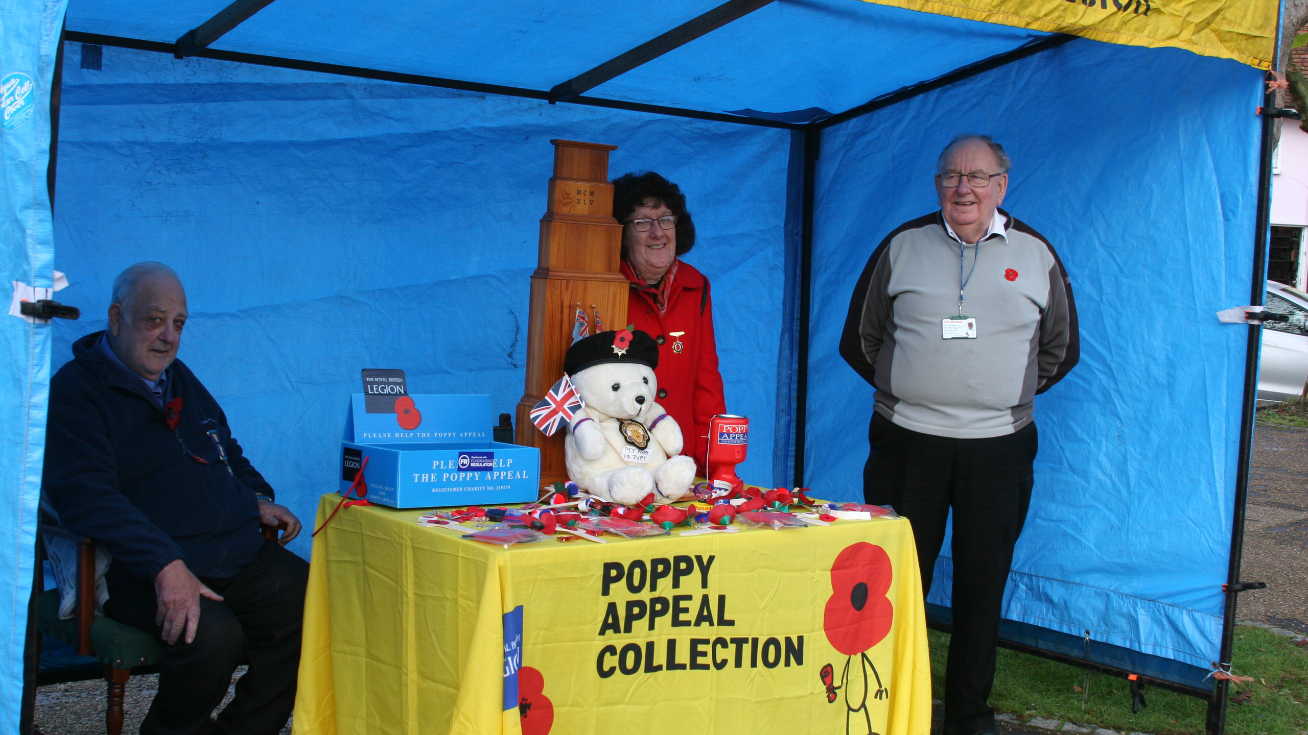 Poppy Appeal Collection in Wickham