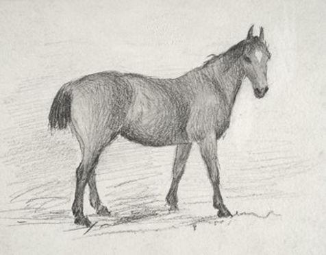 Walking Horse Pencil