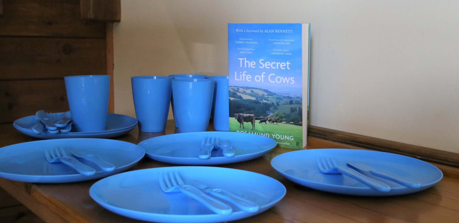 Crockery in the cow sheds.