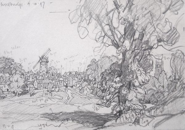 Woodbridge, Fen Meadow