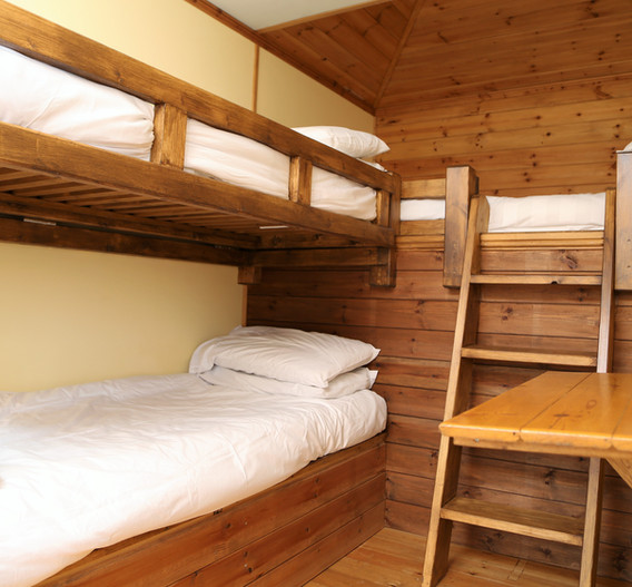 Bunk beds and a raised bed in Buttercup