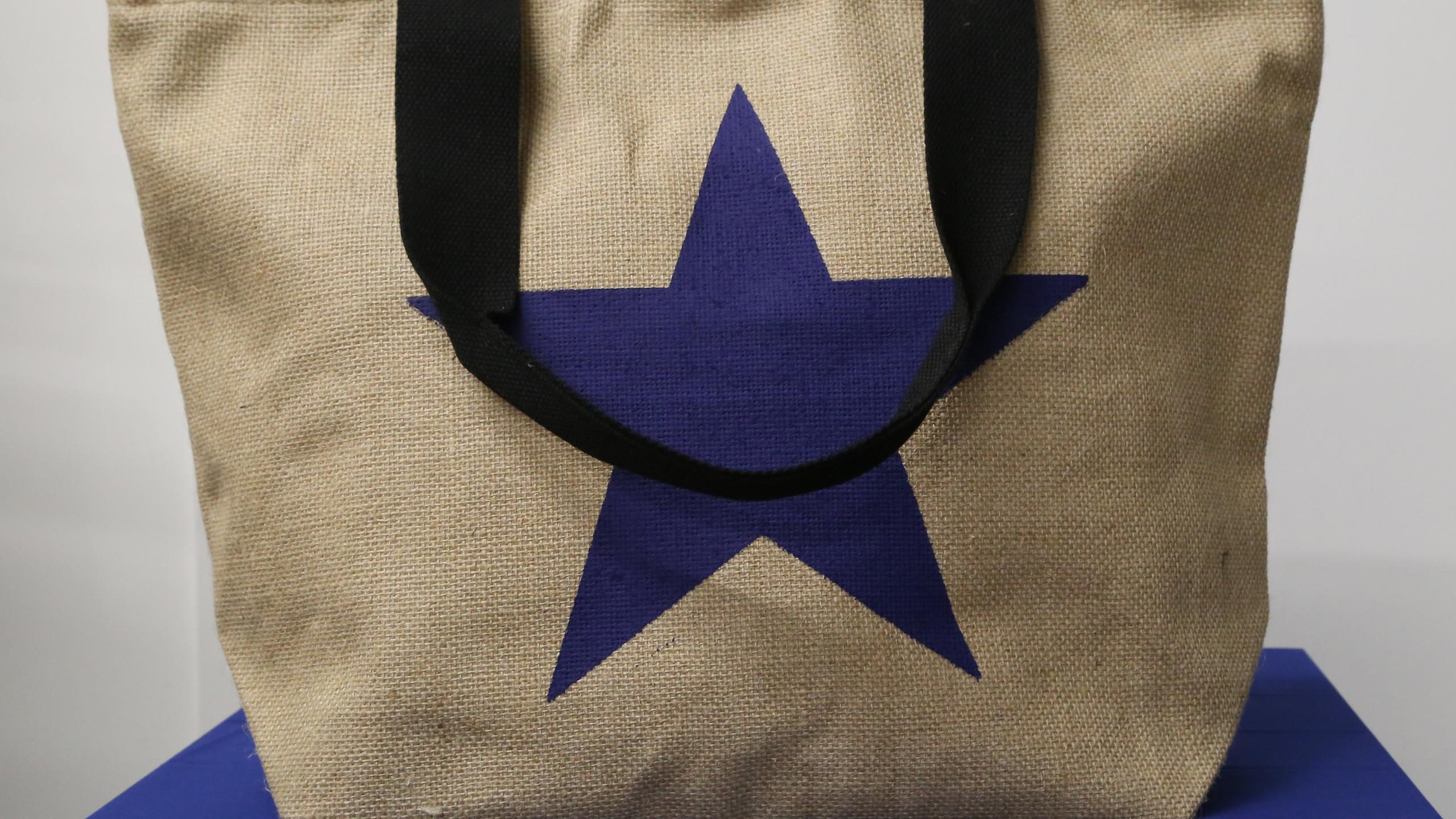 Blue Star beach bag