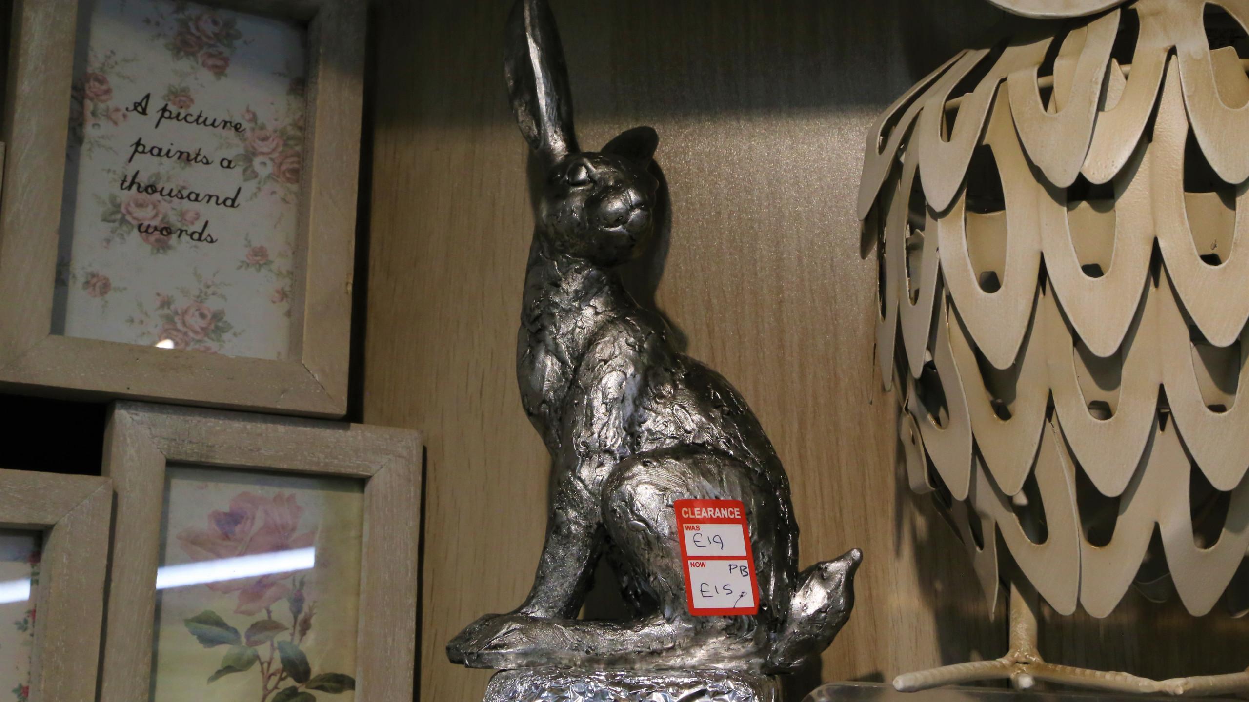 Sale hare