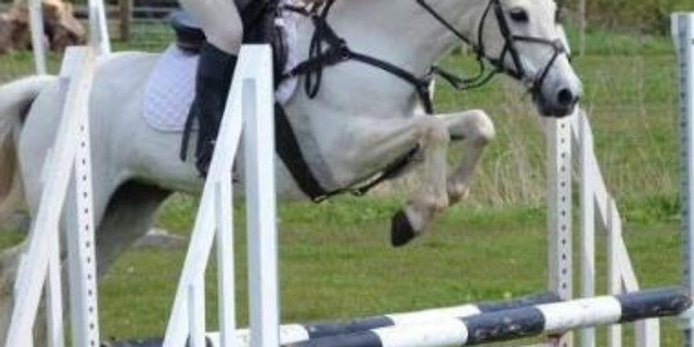 Fun Show Jumping at Valley Farm Equestrian Leisure