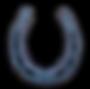 horseyshoe.png