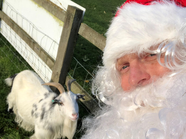 Santa sees the animals