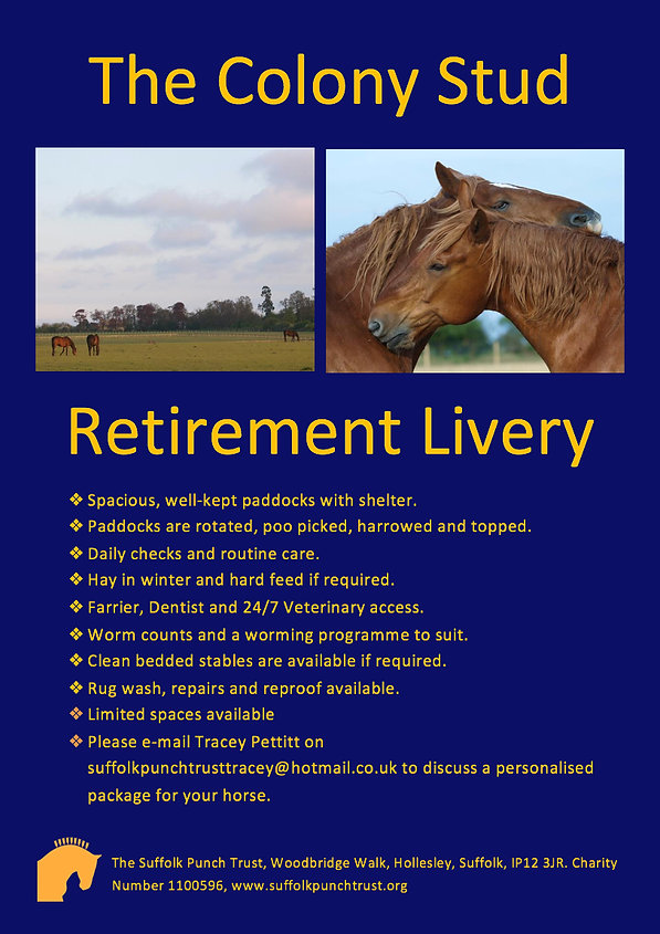 Retirement Livery, The Colony Stud