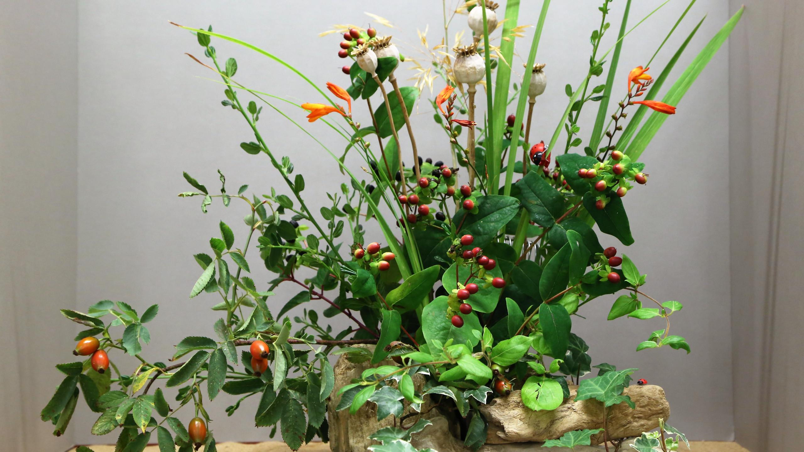 Floral display 2