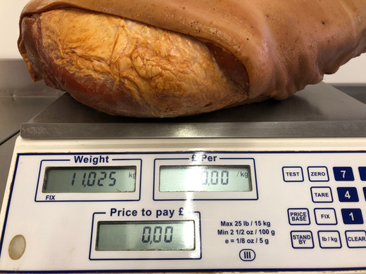 Gammon on the scales