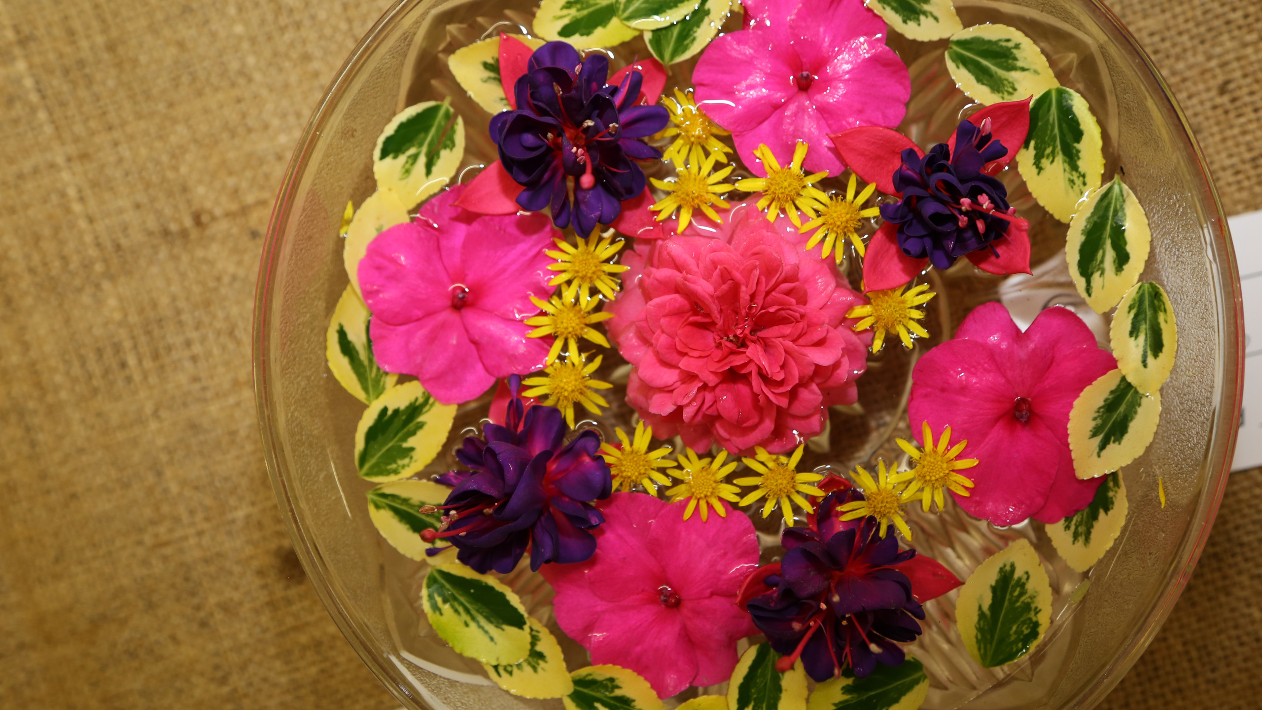 flowers in a bowl 1