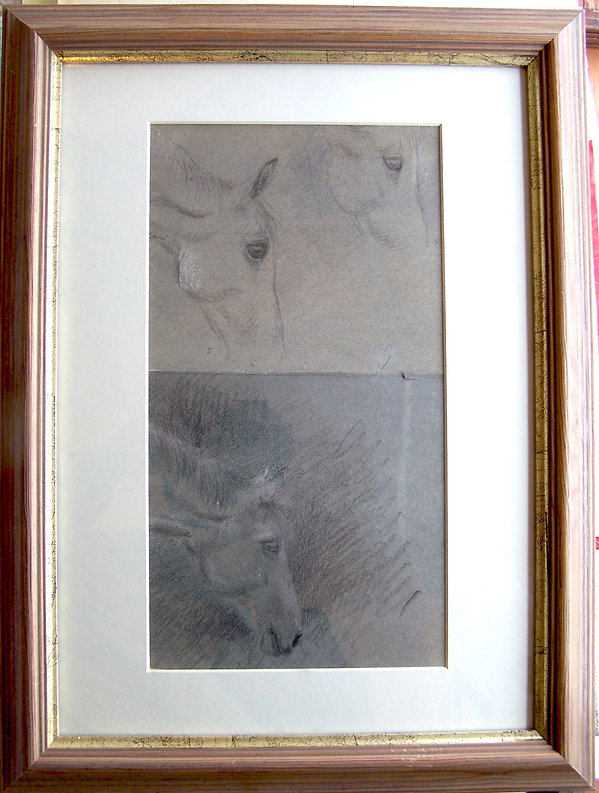 Studies of horses heads