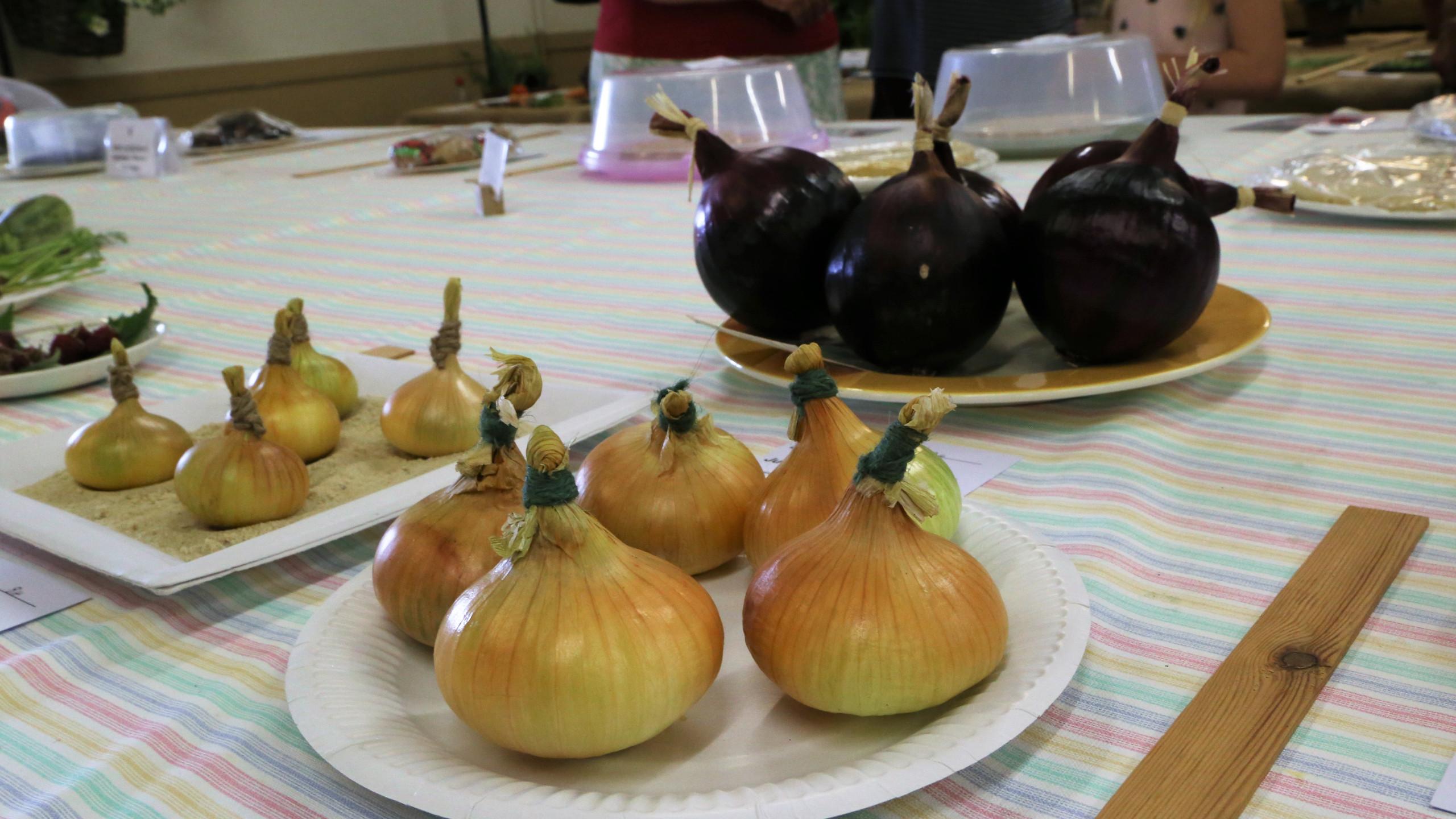Local onions