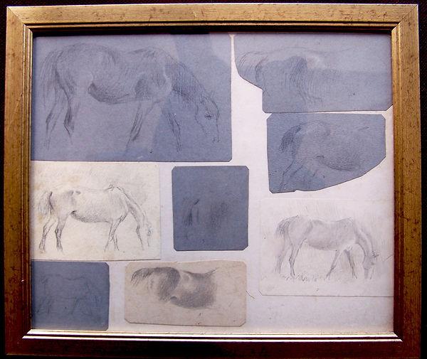 Eight Horse Studies