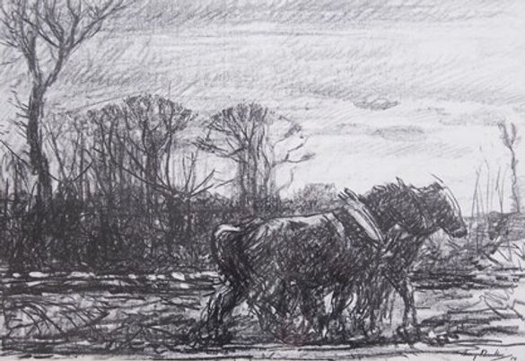 Winter ploughing 1