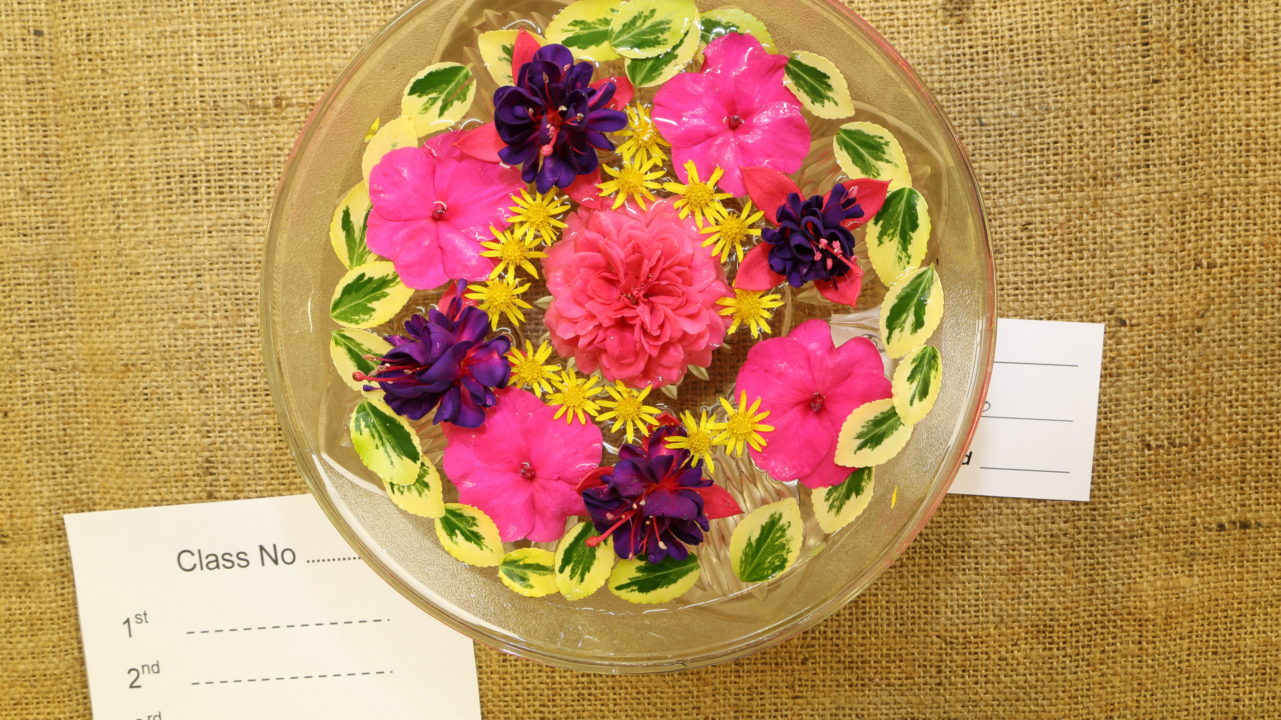 flowers in a bowl 6