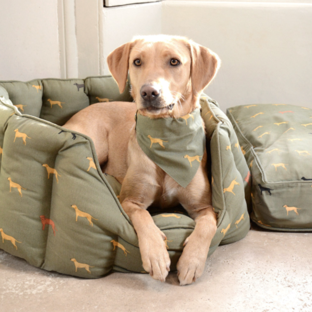 Sophie Allport Dog Bed £60