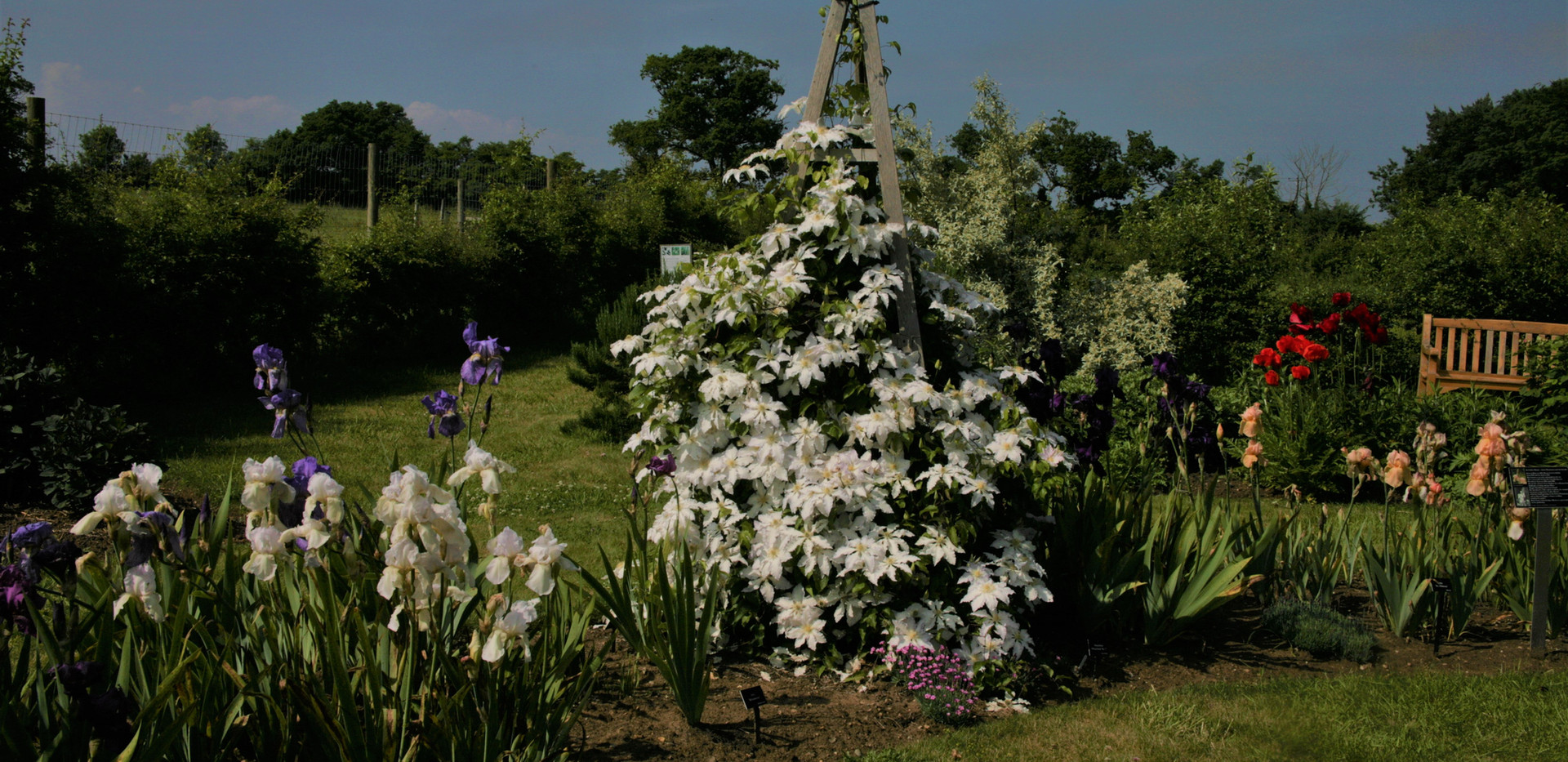 Suffolk Heritage Garden, The Suffolk Punch Trust