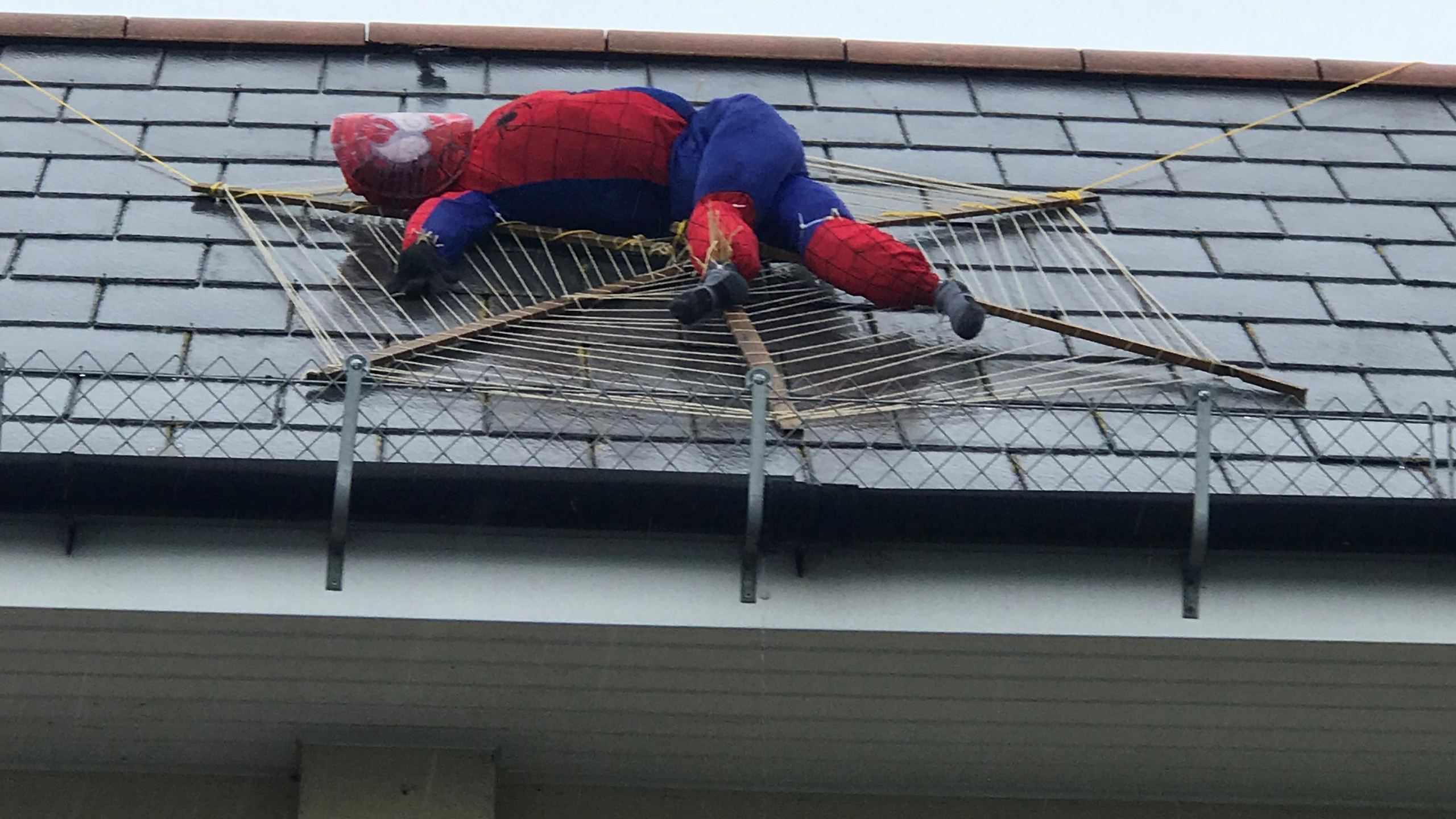 Spiderman on the Co-Op