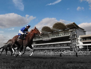 We use the same Resin products as used at Newmarket Racecourse