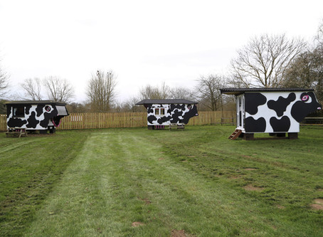The Cow Sheds - a different type of glamping