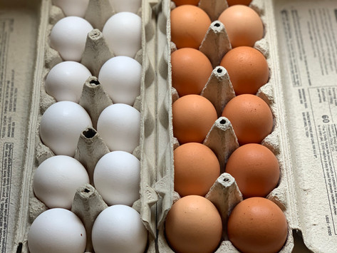 White versus Brown Eggs and Prices in the Long-Run