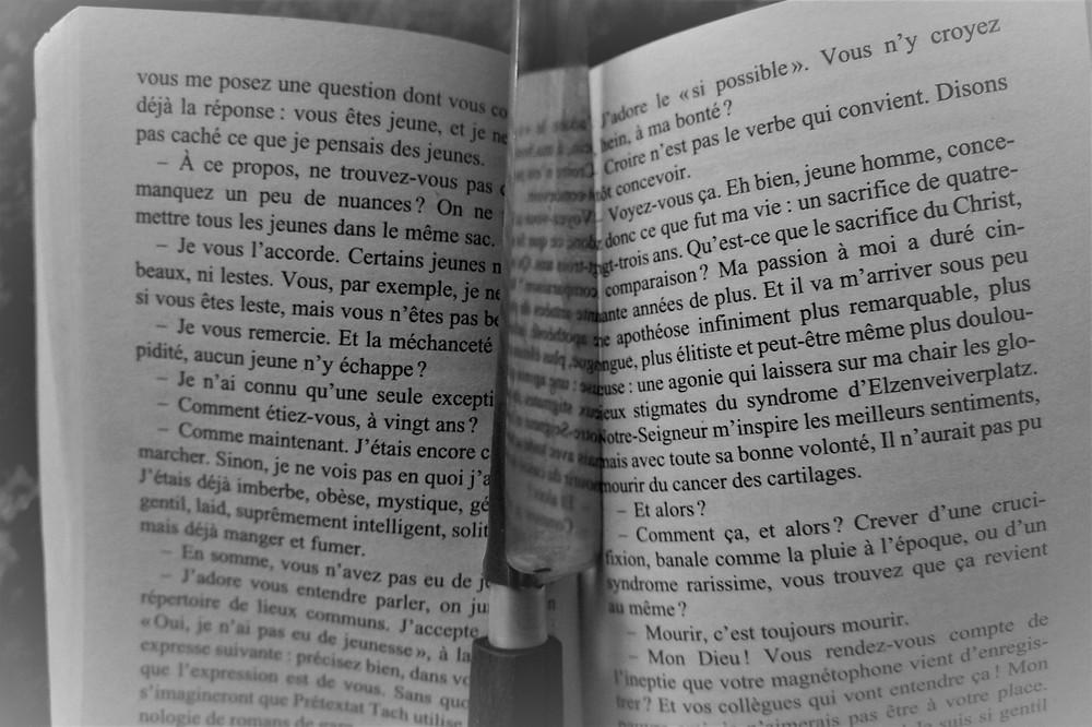 Page du livre Hygiène de l'assassin avec un couteau comme marque page.