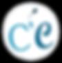 logo gris bleu simple 2.png