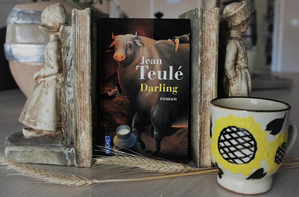 Livre Darling de Jean- Teulé.