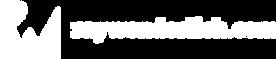 rw-logo-all-white 1.png