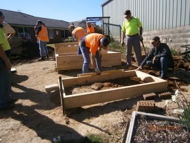 Building vegie boxes