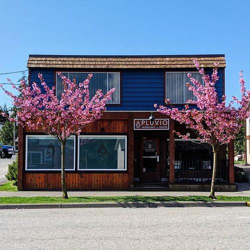 Pluvio - Restaurant Front 3.jpg