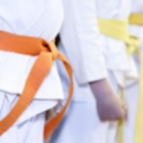 Martial Arts Class_edited_edited.jpg