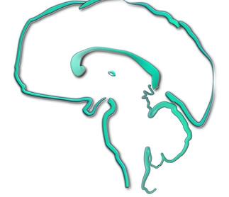 Neurologo em fase de criação