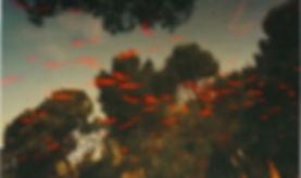 albarran cabrera3 jpg.jpg