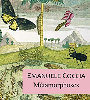 Metamorfosis - Emanuele Coccia