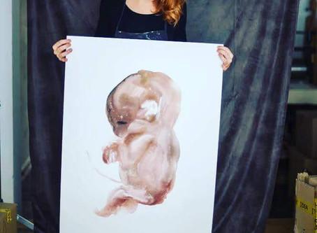 Roedores. Cuerpo de embarazada sin embrión. Paula Bonet.