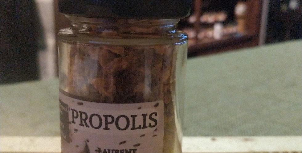 Propolis bio en pot de 40 g