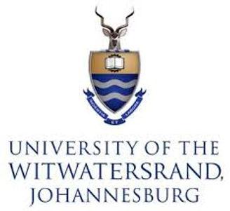 Wits Logo.jpeg