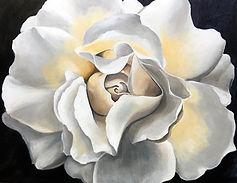 Gardenia 12.8.2021.jpg
