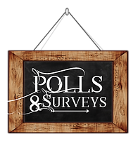 Polls & Surveys.png