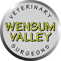 WVVS Logo.jpg