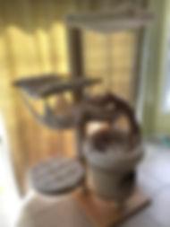 Arbre a chat pour toujours avec maison
