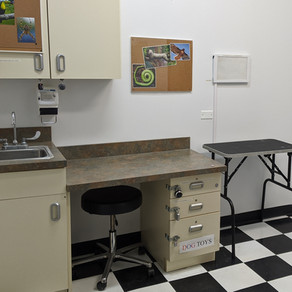 Review: Vet Office (Remote) | Fuzzy Logic Escape Room