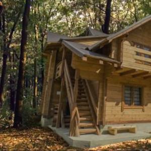 THE CABIN • DISTRICT 3 ESCAPE ROOMS • Remote Escape Room Review